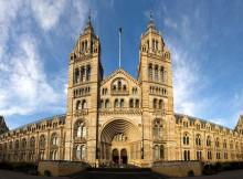 Museo di Storia Naturale a Londra.