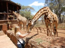 Al Giraffe Center di Nairobi.