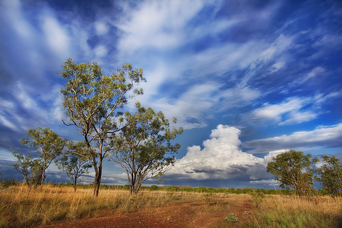 Outback nei Territori del Nord