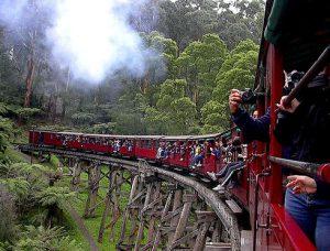 Escursione ai Dandenongs in treno.