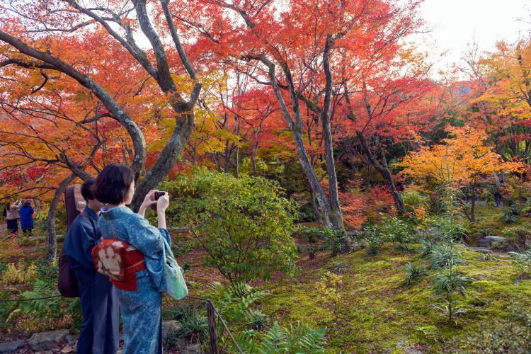 I colori tipici dell'autunno in Giappone, un ottimo periodo per viaggiare.