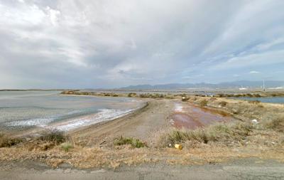Laguna di Santa Gilla, Stagno di Cagliari.