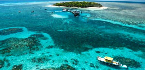 Esplorazioni da Cairns alla Grande Barriera Corallina in Australia.