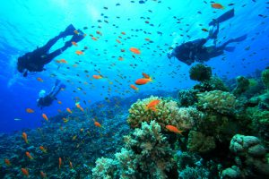 Immersioni e snorkeling in Giamaica.