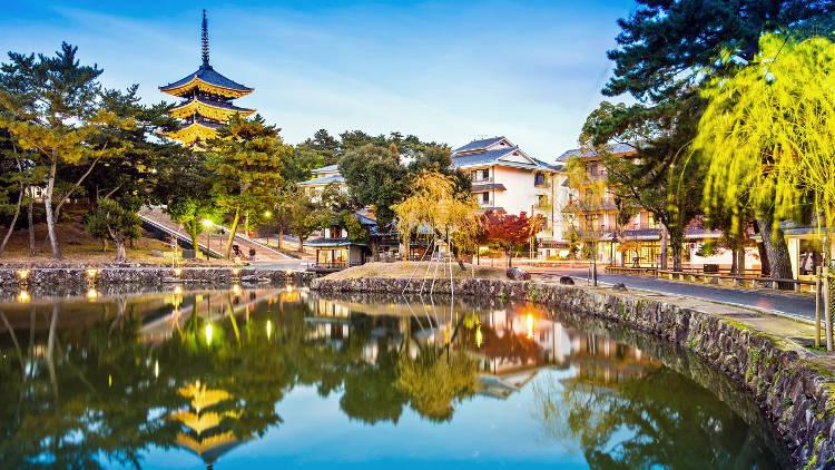 La meravigliosa Nara in Giappone.