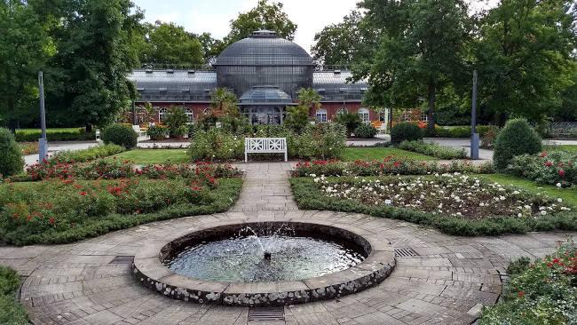 Una piccola parte del giardino botanico di Palmengarten, dove vedere piante di tutto il mondo.
