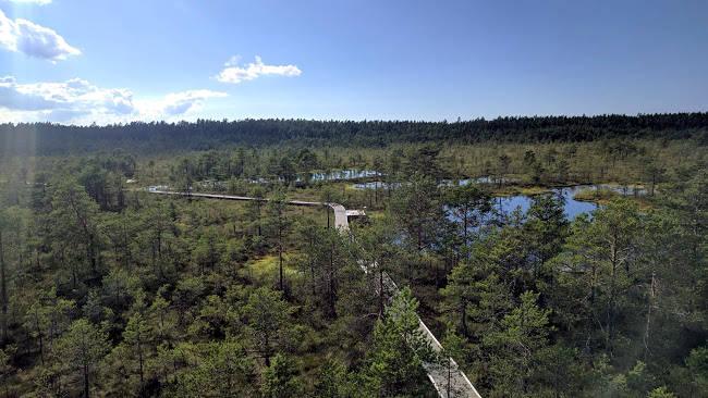 Un'immagine del Parco Nazionale di Lahemaa in Estonia, vicino Tallinn.