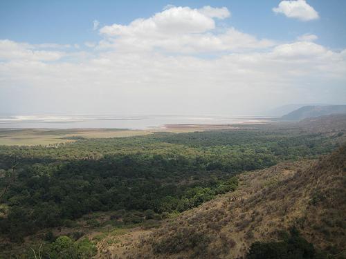 Il parco nazionale del lago Manyara in Tanzania