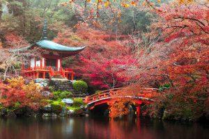 Viaggiare in Giappone per vedere i luoghi più belli.
